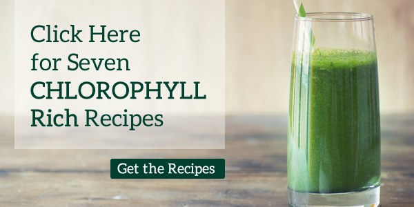 click here for 7 chlorophyll recipes