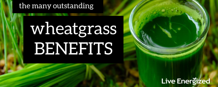 wheatgrass benefits explained