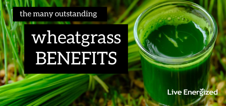 wheatgrass benefits explained