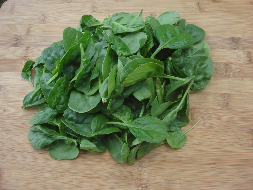 Alkaline Rich Food 1: Spinach