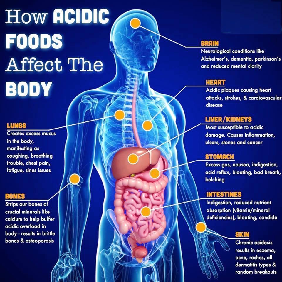 acidic foods effecting the body