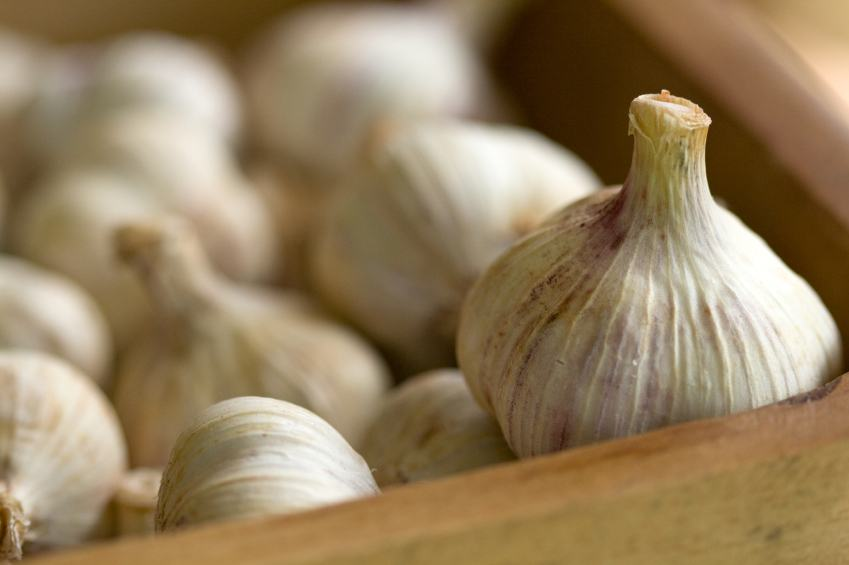 group of garlic in a box