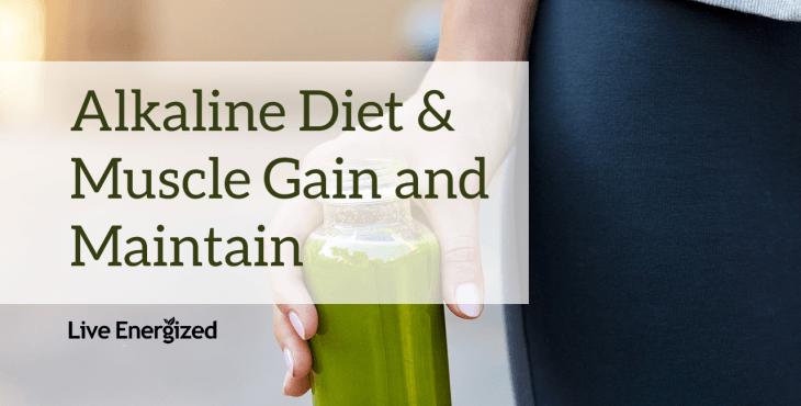 Gain Muscle Alkaline Diet