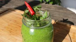 Alkaline Recipe #161 Thai-Inspired Alkaline Green Smoothie