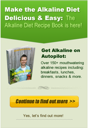 Alkaline Diet Recipe Book Banner