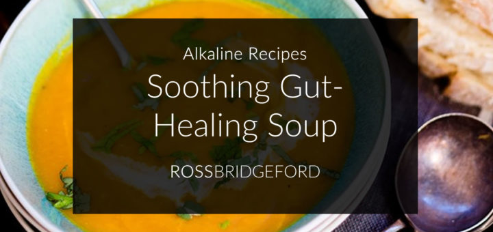 soothing gut healing soup