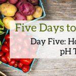 Five Days to Alkaline: Day Five pH Test