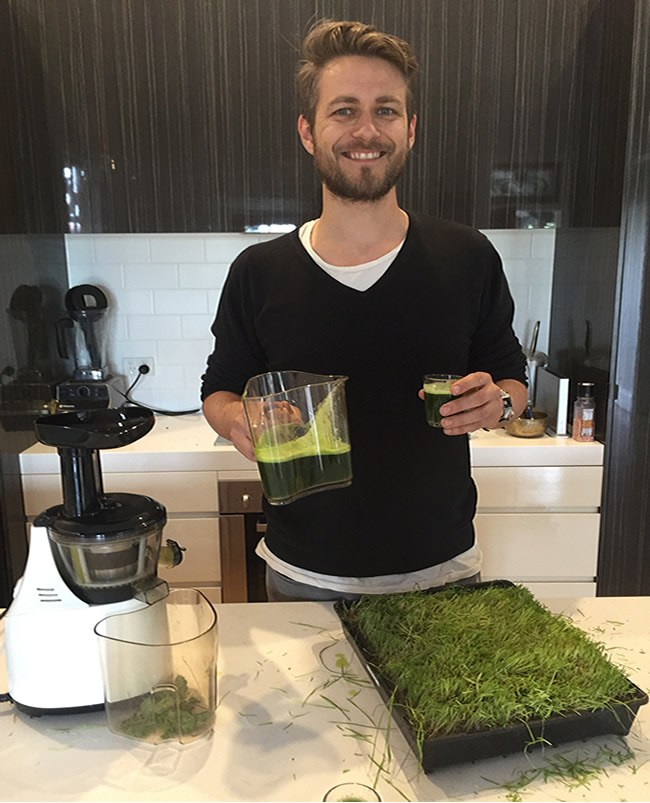 ross juicing wheatgrass