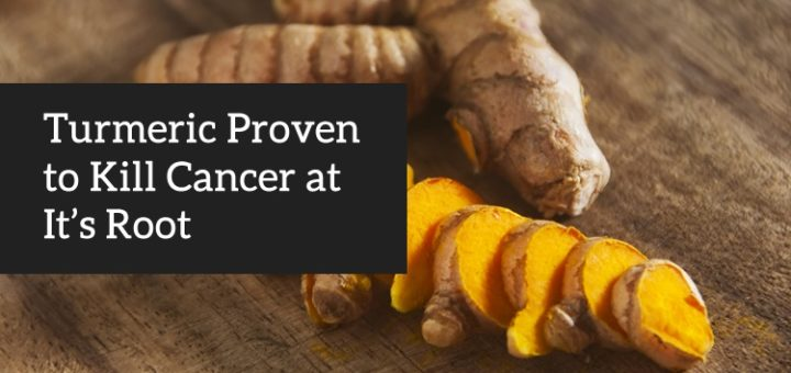 Turmeric at the Root of Preventing & Killing Cancer (New Research