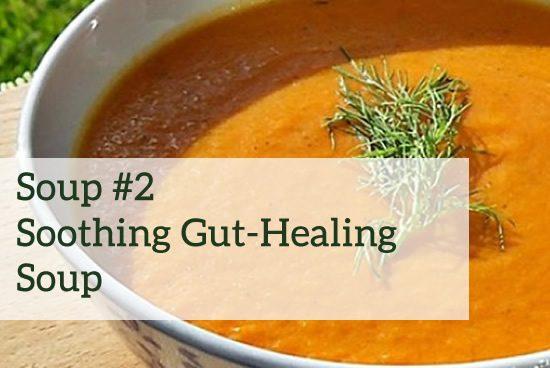 gut healing soup image