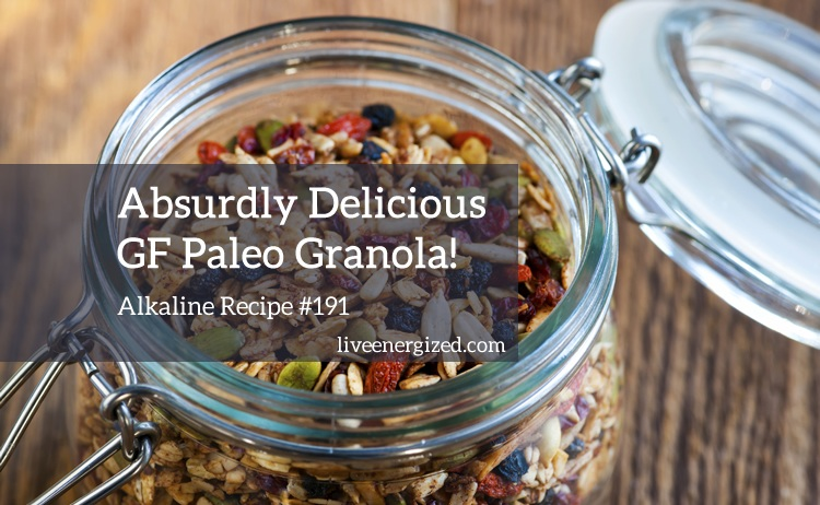 Image of GF Paleo Granola Recipe