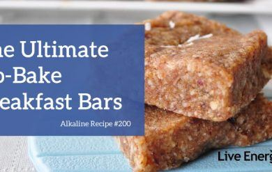 No Bake Breakfast Bars Recipe