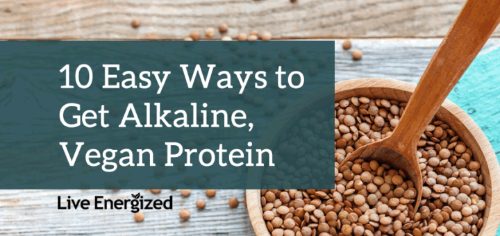 sources of alkaline protein