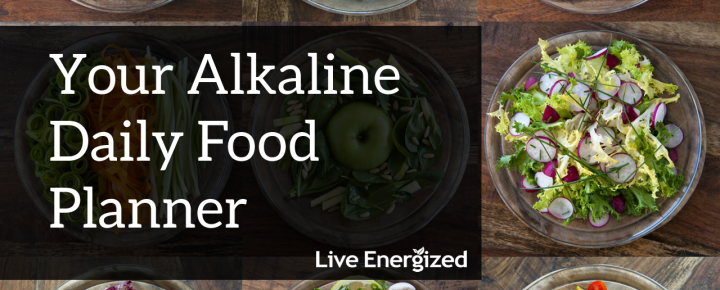 Alkaline food planner how to live alkaline live energized alkaline daily food planner forumfinder Gallery