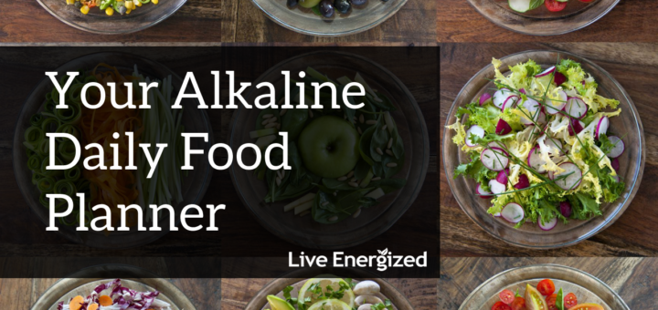 Alkaline Food Planner