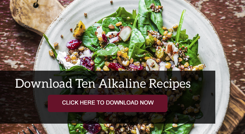 recipes for the alkaline diet plan