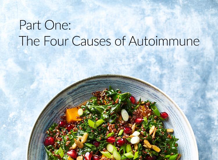 The Four Causes of Autoimmune